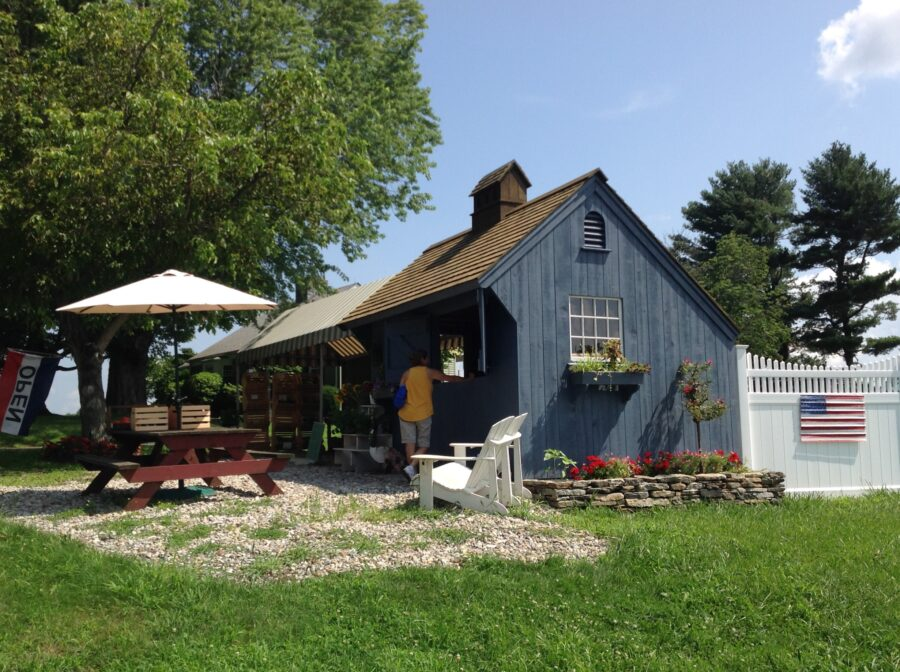 Blue Saltbox Vendor Stand with Table for patrons and open sign