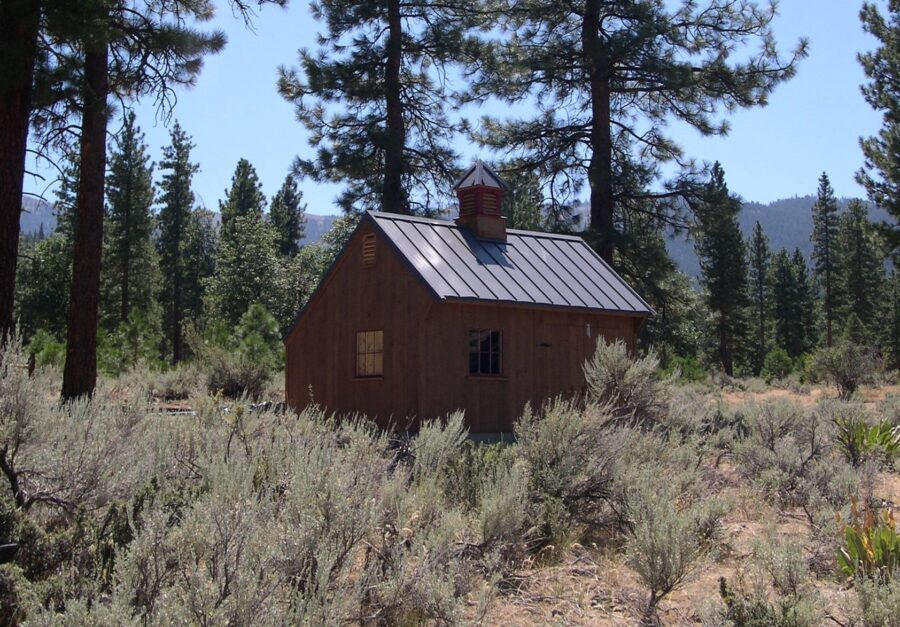 Saltbox Cabin sitting in field surrounded by trees